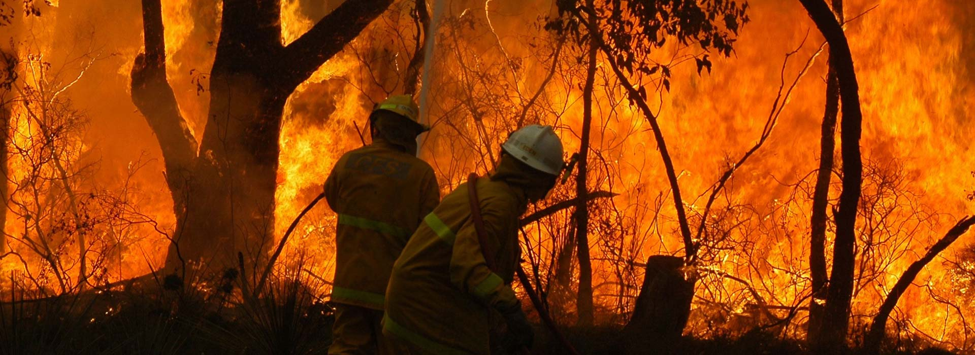 Bushfire Awareness